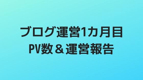 ブログ運営1カ月目 PV数&運営報告